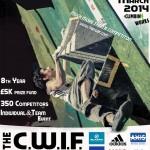CWIF14_V2_poster_web_med