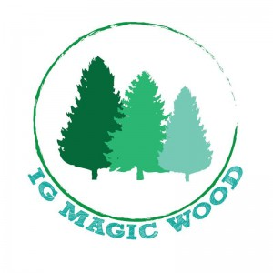 IG Magic Wood Logo