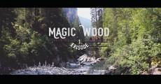 Bouldern im Magic Wood – Episode I