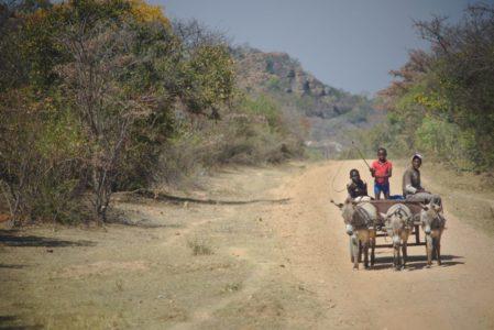 Bouldern Zimbabwe
