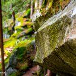 Magic Wood bouldern