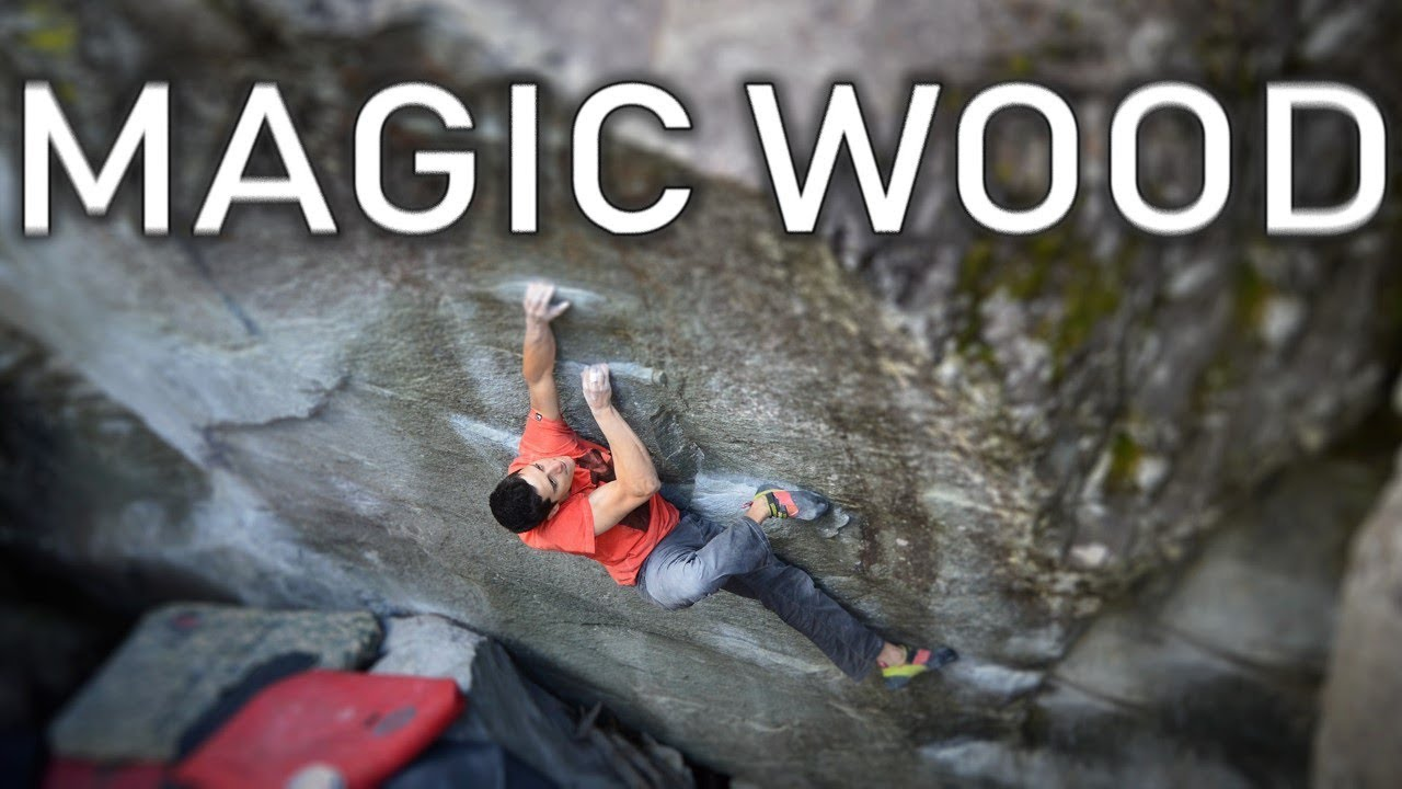 Magic Wood - Bouldern - Video - kletterszene