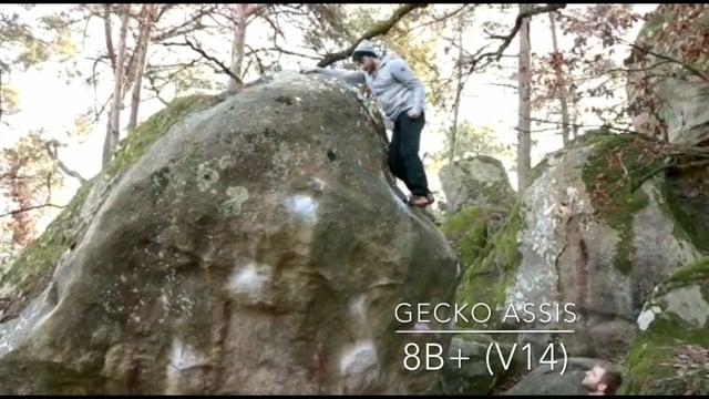 Gecko Assis (8B+) Video Kletterszene