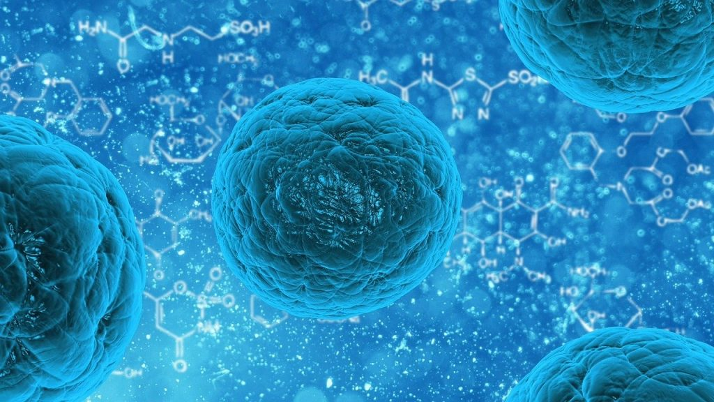 Die Übertragung der Coronaviren erfolgt primär über Sekrete des Respirationstraktes. Also über Tröpfchen- oder Schmierinfektion. Deshalb wird eine gute Händehygiene vom Robert-Koch-Institut als wichtiger Teil der Prävention vermittelt. Eine Übertragung über unbelebte Oberflächen ist bisher nicht dokumentiert. Eine Infektion mit SARS- CoV-2 über Oberflächen,