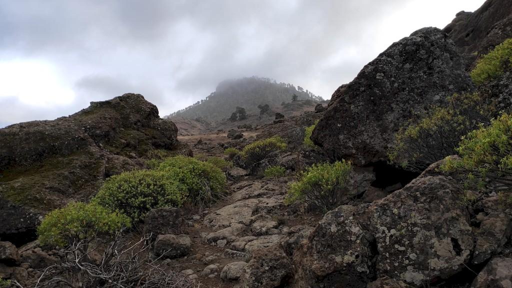 bouldern gran canaria max raeuber