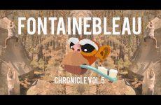 Fontainebleau bouldervideo