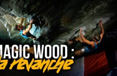 Magic Wood Video